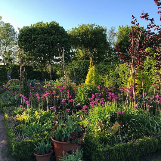 "Screenshot_2018-07-16 Monty Don on Instagram ""Jewel Garden sundown"""